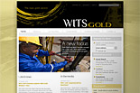 Wits Gold [icon]